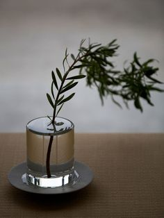 LOVING THIS LOOK: The Disappearing Vase