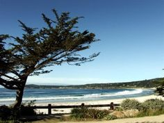 Carmel-by-the-Sea. a great place to surf and take in the sea air. Great Places, Places Ive Been, Beautiful Places, Painting Pictures, Pictures To Paint, Places To Travel, Places To Go, Carmel California, Carmel By The Sea