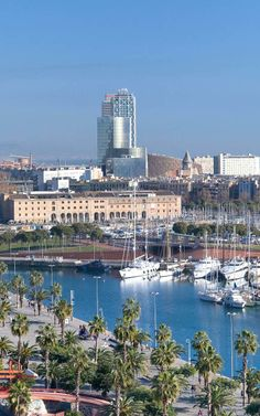Barcelona: A Smart City Model For The Planet