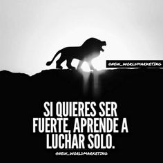 SI QUIERES SER FUERTE, APRENDE A LUCHAR SOLO. Inspirational Phrases, Motivational Phrases, Joker Cosplay, Success Quotes, Life Quotes, Suicide Squad, Millionaire Quotes, The Ugly Truth, Spanish Quotes