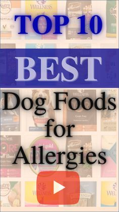 Healthy foods for dogs-the list of top 10 best dog foods for Allergies!Follow us for more review videos,UPDATED RANKING MONTHLY! #homed dog#healthy foods for dogs#idea for dogs#food for dogs homemade#homemade pet food#craft for dog#pet food recipe #recipe for dog#food for dogs recipes#homemade doggie treats#homemade food for dogs#great dog#home made dog treats Homemade Dog Treats, Doggie Treats, Homemade Food, Best Dog Food Brands, Dog Crafts, Beagle Puppies, Beagles, Allergy Free, Allergies