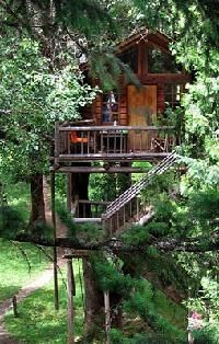 Wow a hotel made up of tree houses and zip lines, in Oregon. Very cool!!!