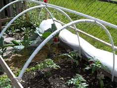 Protect your plants from unfavorable conditions with a cold frame hoop house. They're pretty simple to build and the supplies don't cost much. This will allow you grow outdoors earlier in the Spring and later in the Fall. Here's what you need: