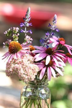 upper midwest flower ideas