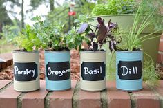 DIY Kitchen Herb Garden from About a Mom - Top Ten Craft/DIY Projects from Foodie Friends Friday Linky Parites 2015 | Daily Dish Magazine
