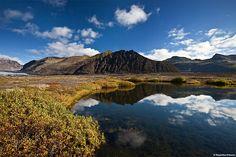Pure Nature - Skaftafell National Park - South Coast Iceland
