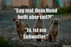 """""""Sag mal, Dein Hund bellt aber tief?!"""" """"Ja, ist ein Subwuffer."""" ... gefunden auf https://www.istdaslustig.de/spruch/1319 #lustig #sprüche #fun #spass"""