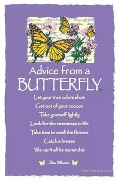 Spirit Totem Animals: Advice from Butterfly. Butterfly Quotes, Butterfly Spirit Animal, Butterfly Meaning, Butterfly Kisses, Butterfly Images, Butterfly Art, Animal Spirit Guides, Advice Quotes, Advice Cards