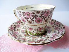 Vintage Rosina Pink Brown Floral Teacup & Saucer  English