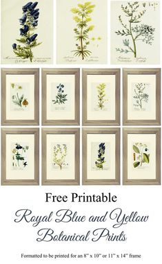 """Free Printable Royal Blue and Yellow Botanical Prints formatted to be printed for an 8""""x10"""" or 11""""x14"""" frame. www.simplymadebyrebecca.wordpress.com"""