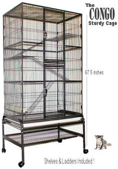 Congo Sturdy Cage  $219.95 + shipping.  52 tall, 32 wide, and 21 deep,1/2 inch bar spacing.  3 removable shelves and 3 removable ladders. The stand is on heavy rolling wheels, so moving it around is easy. The bottom grill (which is over the pull-out tray) also pulls out  A pull out plastic tray for easy cleaning is also included. Cage is removable from the stand and can lock-onto the stand for security. Two 10 x 22 inch front doors, for easy access to your pet. Assembly video!