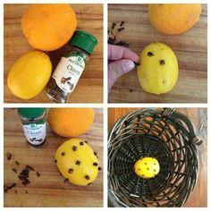 Diy natural fly repellant
