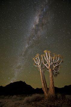 Richtersveld night sky | Getaway Magazine