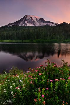 Bountiful Morning by Mike Ryan | Taken at Reflection Lakes in Mt Rainier National Park in Washington. This is certainly not an original composition for this location but iconic shots are iconic for a reason. I felt very lucky to be there that morning.