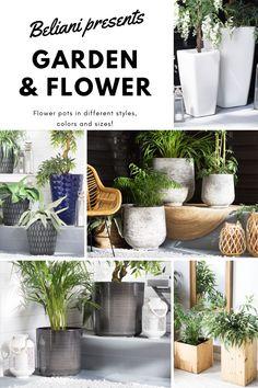 Blumentöpfe in verschiedenen Stilen, Farben und Größen passend zu Ihrem Garten. Blumen sind in fast jedem Garten ein Muss. Machen Sie Ihre besonderen mit diesen niedlichen und dekorativen Töpfen. Flower Pots, Flowers, Different Styles, Plants, Rest, Color, Be Creative, Waiting, Flower Vases