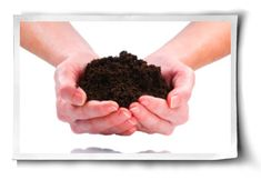 What's Hiding in Your Organic Fertilizer?