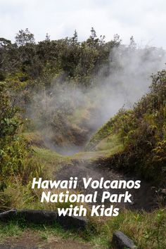 The highlight to visiting the Big Island for many is their time at Hawaii Volcanoes National Park. It is a great place to spend a few days of your trip. Hawaii Vacation, Hawaii Travel, Travel Usa, Globe Travel, Vacation Ideas, Travel Tips, Hawaii Volcanoes National Park, Volcano National Park, All Family
