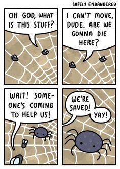 Thank U, Mr. Spider
