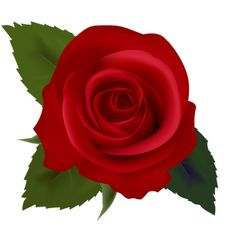 http://webclipart.about.com/od/events/ss/Valentine-Day-Symbols_4.htm