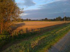 Quakenbrück: Sonnenuntergang über dem Feld