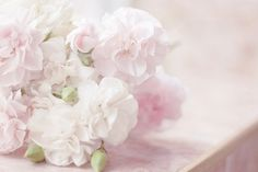 a whisper of roses Pretty Little, Pretty In Pink, White Peonies Bouquet, Kawaii Shop, Pink Turquoise, Pastel Colors, Moodboards, Girly, Fancy