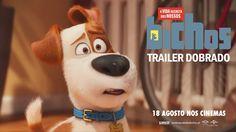 """""""A Vida Secreta dos Nossos Bichos"""" - Trailer 2 Oficial Dobrado (Portugal..."""