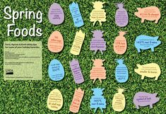 The USDA created this infographic about spring foods with some facts, figures and food safety tips as certain seasonal foods make their way into spring. Food Safety Tips, Easter Dishes, Nutrition Articles, Seasonal Food, Spring Recipes, Kids Health, Favorite Holiday, No Cook Meals