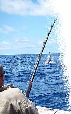 Magasin de pêche Pacific Pêche