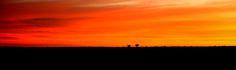 Sunset on Cordillo Downs (4)