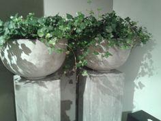 planten in stoere potten op zuil, prachtig