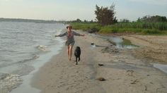 Delaware Seashore State Park... list of pet friendly hotels nearby and rules