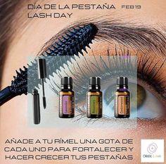 Doterra Recipes, Rose Oil, Doterra Oils, Melaleuca, Hair Health, Body Care, Beauty Hacks, Essential Oils, Doterra Essential Oils