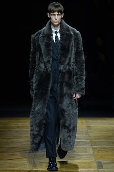 Dior Homme Fall-Winter 2014 Men's Collection
