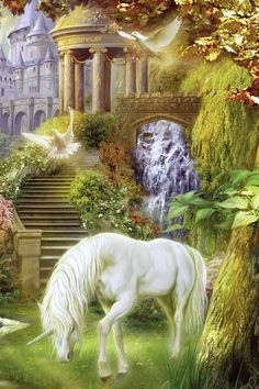 Unicorn And Fairies, Unicorn Fantasy, Unicorns And Mermaids, Unicorn Horse, Unicorn Art, Beautiful Fairies, Beautiful Horses, Magical Creatures, Fantasy Creatures