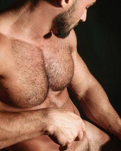 #hairymen #gayhairymen #hairymenlovers #hothairymen #ilovehairymen #musclemen  #sexymusclemen #beardmusclemen #gaymusclemen #hairychest #hairymuscle #hunks #gayhunks #beardedgay #hairygay #hairymen #hairychest #thehairyhunk #hairybod #hairyabs #hairy #chestperfection #muscles #hotmen #sexymen #beautifullybuilt #manrugged #scruffgay #scruffygay #scruff