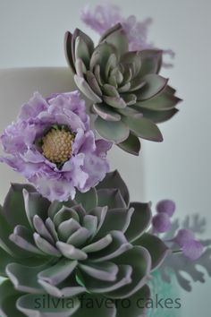 Succulent flowers of the cake.