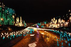 Medellin, Colombia during Christmas time = the most spectacular display of lights I have EVER seen! The themes & decorations change each year. Please go see it in person!
