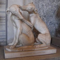 Greyhound art from 2 B.C.  omg even back then, they were obviously precious and so full of love! love mah greys!