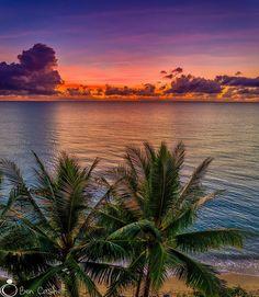 Palm Cove, QLD Ocean Sunset, Sea And Ocean, My Favorite Image, Beautiful Beaches, Good Morning, Sunrise, Palm, Paradise, Australia