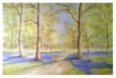 Bluebell forest - water colour, A2