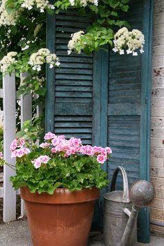 Gezellig hoekje in de tuin met geraniums en luiken Voor een onderonsje  Leuke trap naar de veranda Lieve kleur voor...