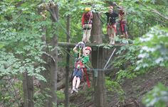 Treetop Trekking and Zip Lines at Horseshoe Valley Resort, Ontario! Horseshoe Valley, Amazing Adventures, Swings, Trekking, Ontario, Places To See, Things To Do, Around The Worlds, Vacation
