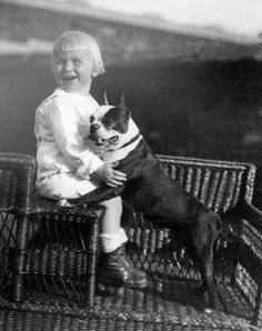 Gerald Ford With His Boston Terrier