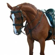 Blue Jumpers Horse Line Unisexs Jhl Fleece Rug Navy//Burgandy//White 6 3