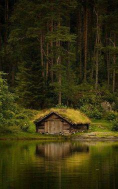 Omg. Let me love here!
