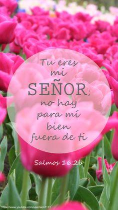 """Salmos 16:2b... """"Tu eres mi Señor; no hay para mí bien fuera de ti"""""""