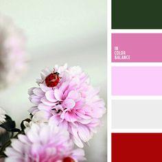 The color palette number 1068: Korolevishna, burgundy-red, red, crimson, soft shades of pink, soft pink, pastel pink, color matching, color matching for the house, light pink, dark green, dark red, fuchsia, color scheme, bright pink.