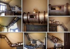 Home Office Cat Transit System Office Cat, Home Office, Office Decor, Steampunk Cat, Steampunk House, Cat Shelves, Shelving, Cat Playground, Cat Tunnel