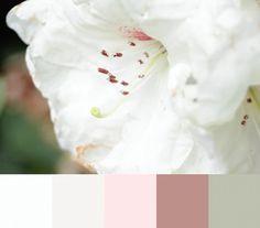 colourpalettes