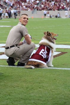 Reveille | UCLA vs. Texas A&M | Sept. 3, 2016 Aggie Game, Aggie Football, Collie Puppies, Rough Collie, Texas A&m, Men In Uniform, Cute Dogs And Puppies, Meet The Team, Sheltie